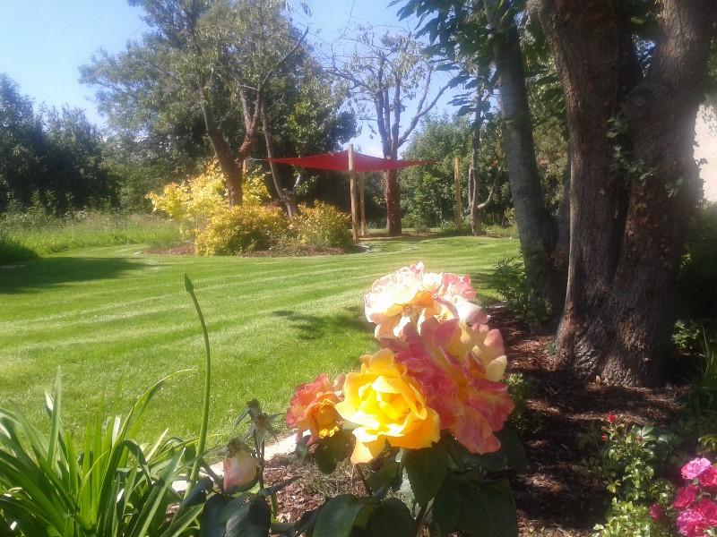 Am nagement d un grand jardin romill artisan for Amenagement grand jardin