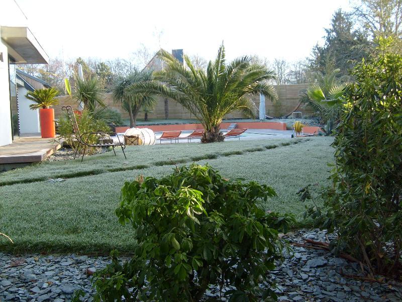 Plantation palmier cesson s vign artisan paysagiste for Cesson sevigne piscine