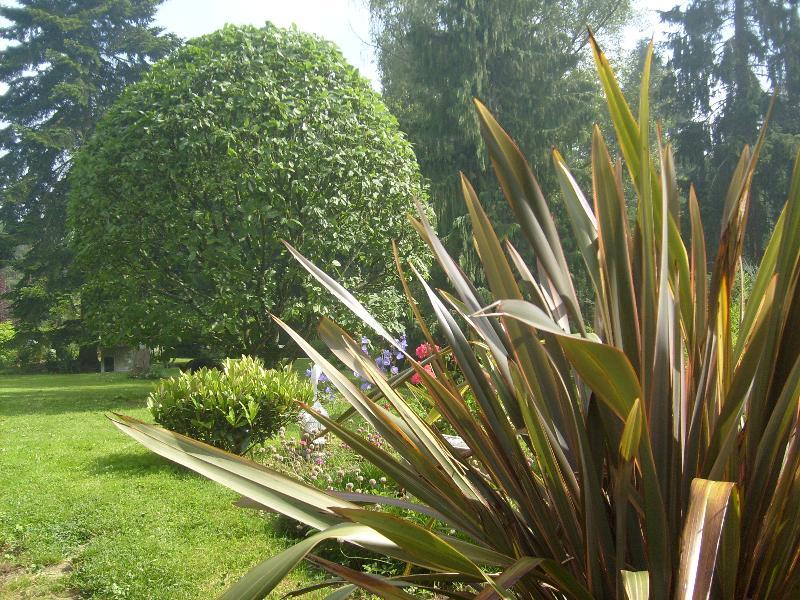 Entretien de jardin pac artisan paysagiste rennes for Entretien jardin 68