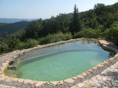 Piscine naturelle - Bassins séparés