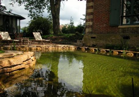 Piscine naturelle - Bassin unique
