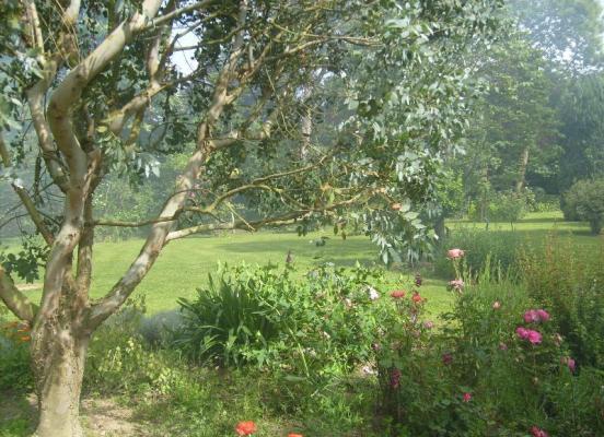Grand Jardin fleuri - Pacé